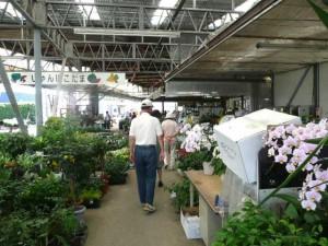 都城、農産物売場