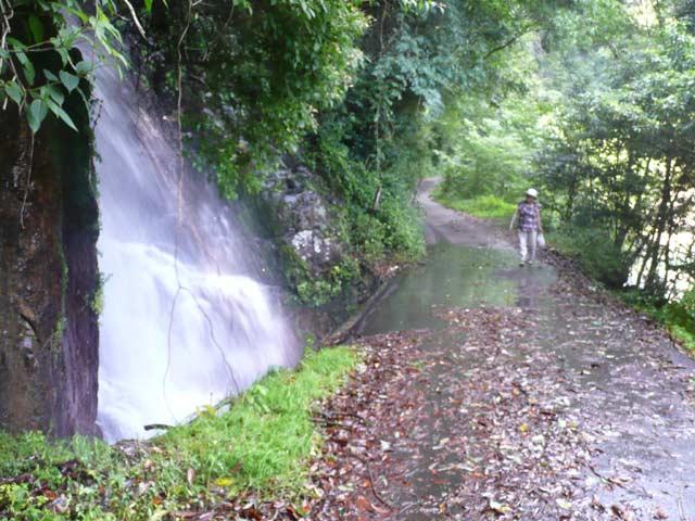 尾鈴山の渓谷