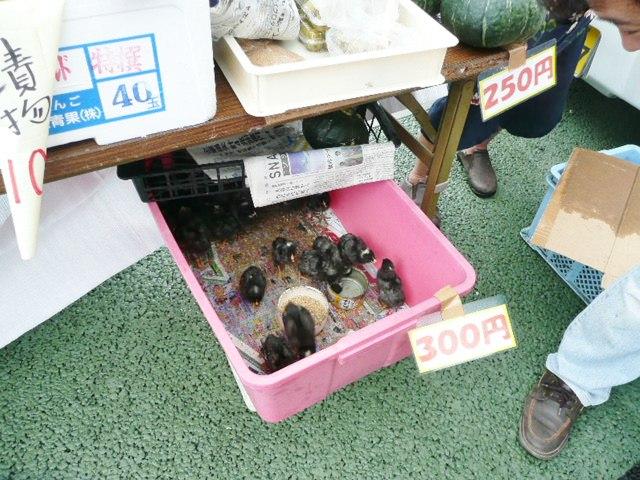 川南軽トラ市 露店