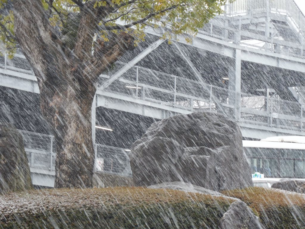 久留米で大雪に遭遇
