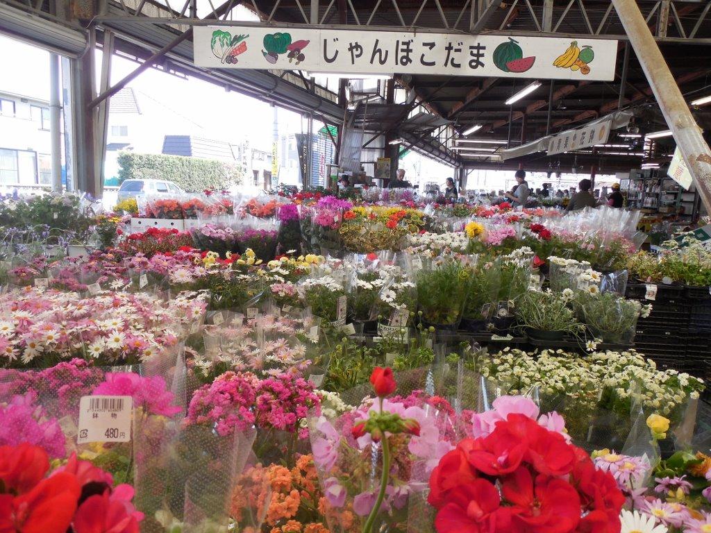 野菜や花の販売所、「こだま」