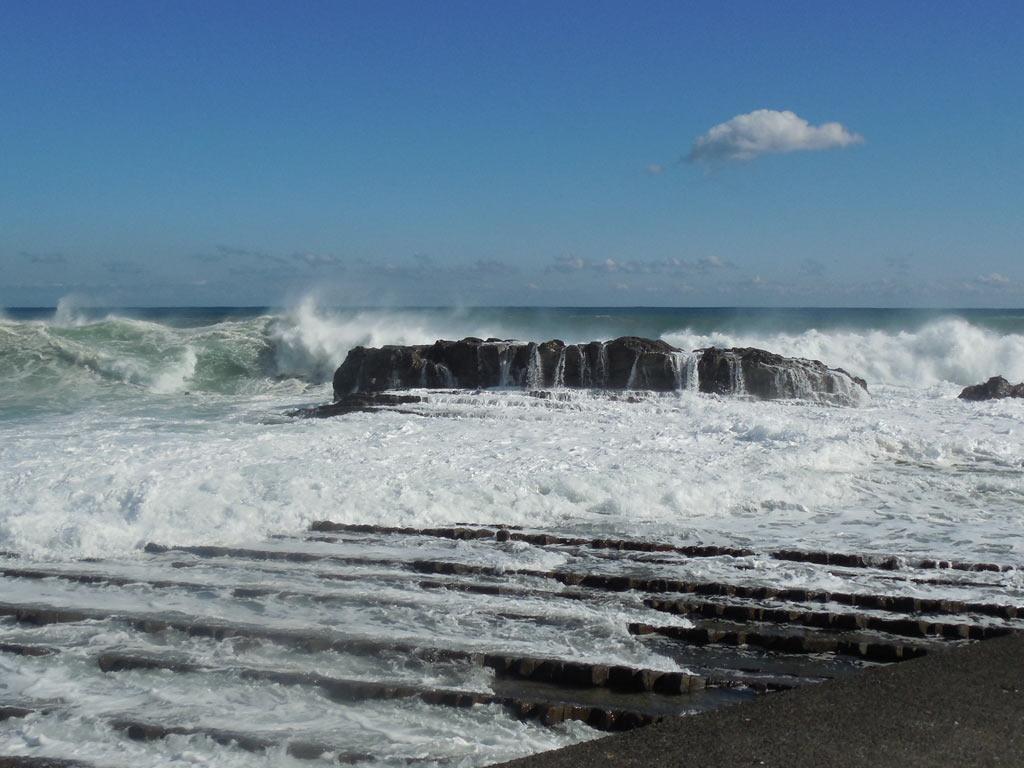 堤防の突端から海を眺めると